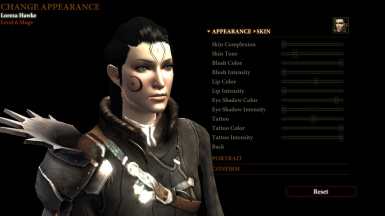 how to download dragon age 2 mods manually